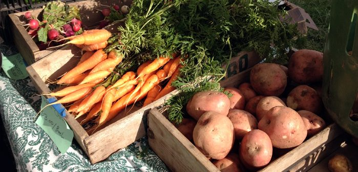Hunterdon Land Trust farmers market, Planck, Real Food blog
